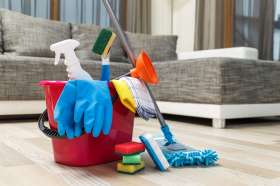 Cleaning products for a vinyl floor